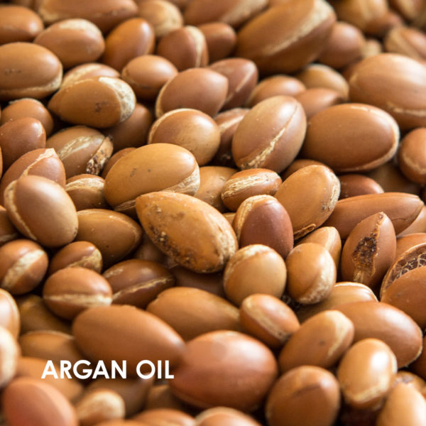 Wedo Global Launch eRetail Ingredients argan oil