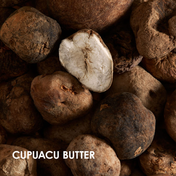 Wedo Global Launch eRetail Ingredients cupuacu butter
